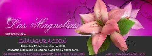 Arreglos Florales La Serena Flores Rosas Mejor Precio En