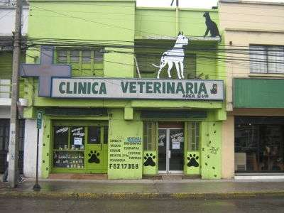 Clinica veterinaria area sur