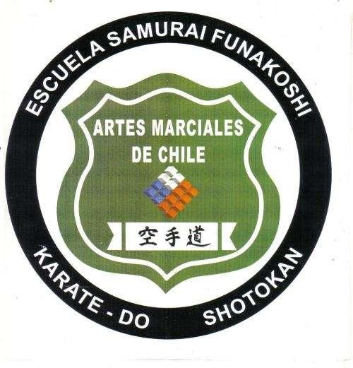 Instructor profesional de artes marciales