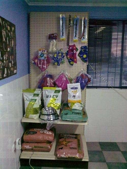 Clinica veterinaria alto mackenna
