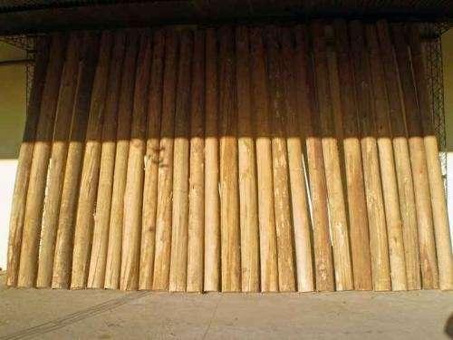 Postes para pilas de edificio varas de eucaliptus