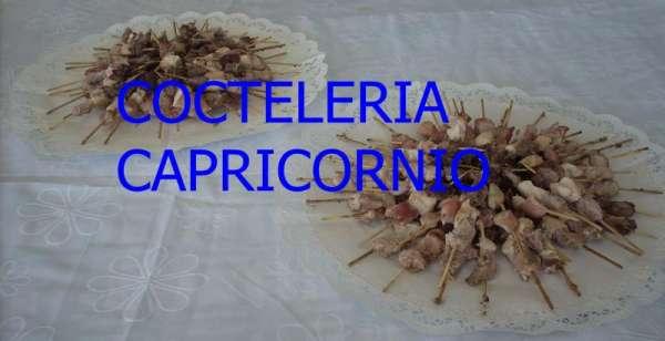 Cocteleria capricornio ofrece brochetas canapés empanaditas etc...