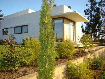 Vivero huilquilemu: se venden plantas y se diseñan jardines