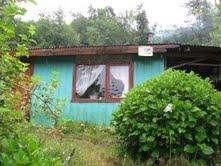 Vendo 2 casas con terreno orilla carretera región de los rios paillaco valdivia