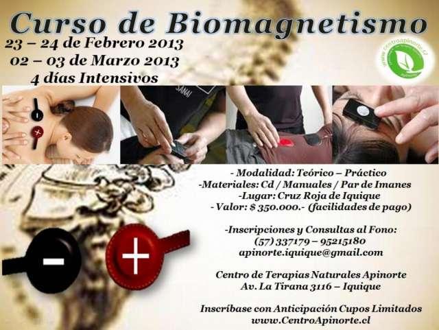 Curso de biomagnetismo y magnetotrapia en iquique