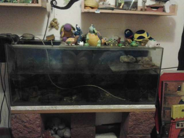 Vendo acuario de un metro con accesorios