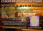 Cursodebiomagnetismoen santiago febrero 19 20 …