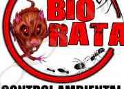 Fumigaciones biorata control ambiental de plagas