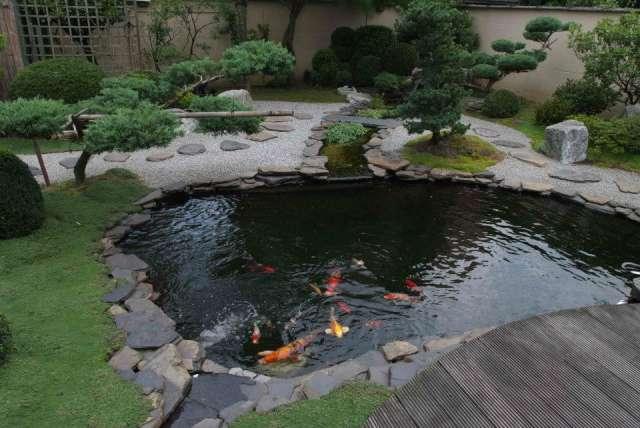 Laguna artificial diseño y construcción de piscinas y lagunas ecológicas.fono 50176916 cascadas, y fuentes de luz