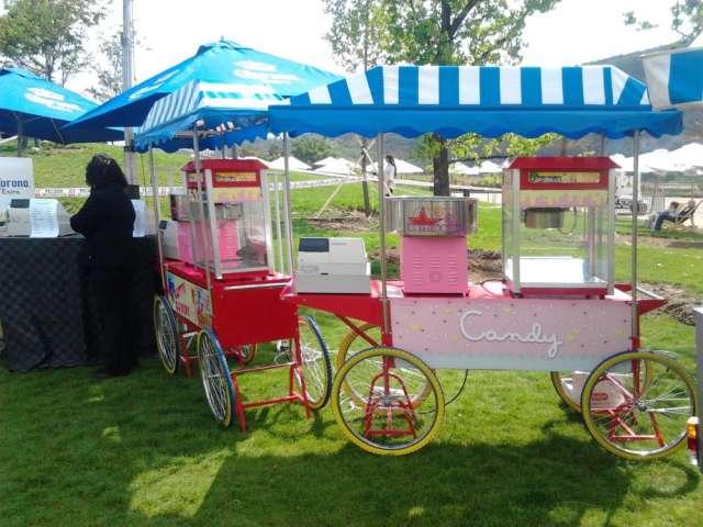 Fotos de Arriendo carritos de comida mote con huesillo etc hot dog y  dulce 1