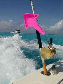 Out-rover: la mejor alternativa de los pescadores de agua salada de los estabilizadores caros!