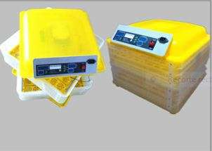 Incubadora automatica 96 huevos