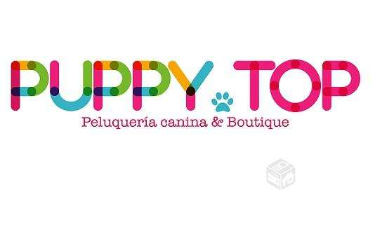 Peluquería canina & boutique puppy top