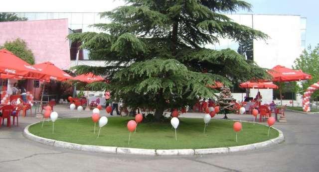 Decoracion globos arcos trenzas cumpleaños eventos empresas