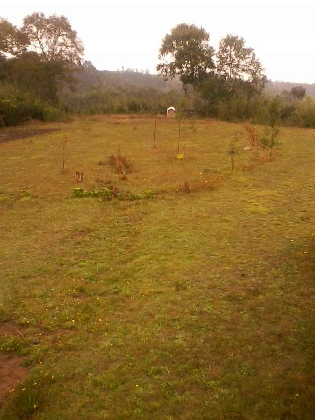 Vende casa de campo con terreno