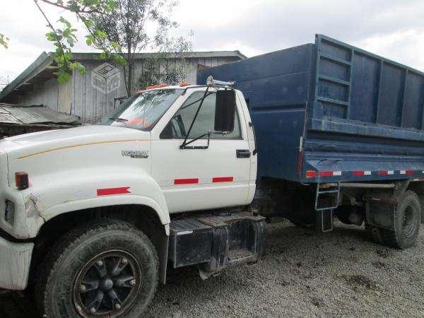 Vendo o permuto camión tolva