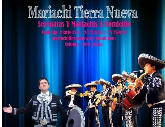 Serenatas en santiago,mariachis tierra nueva: celular: 6-371 3814