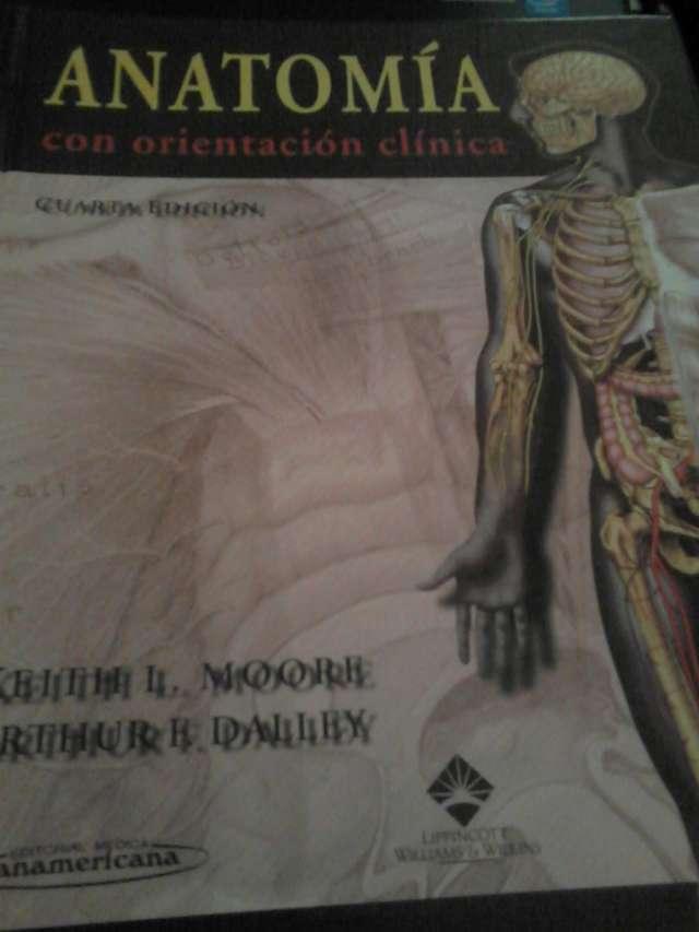 Vendo libro de anatomía con orientación clínica de de moore y daley ...