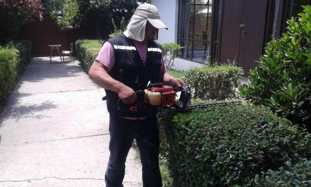 Trabajador a de casa particular apuntes de derecho for Jardinero en casa