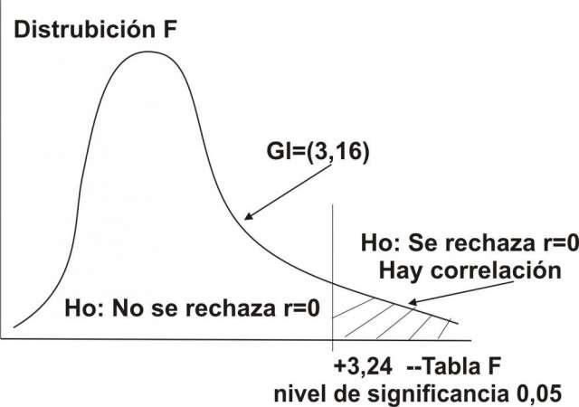 Desarrollamos algoritmos, distribución de probabilidad y curvas de representación