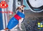 Parka para perros de razas grandes guaustore