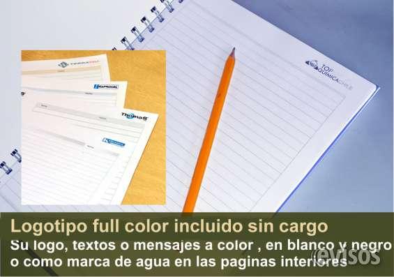 Logotipo a color en paginas internas.