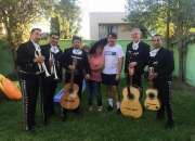 Artistas musicos profesionales mariachi sal y tequila