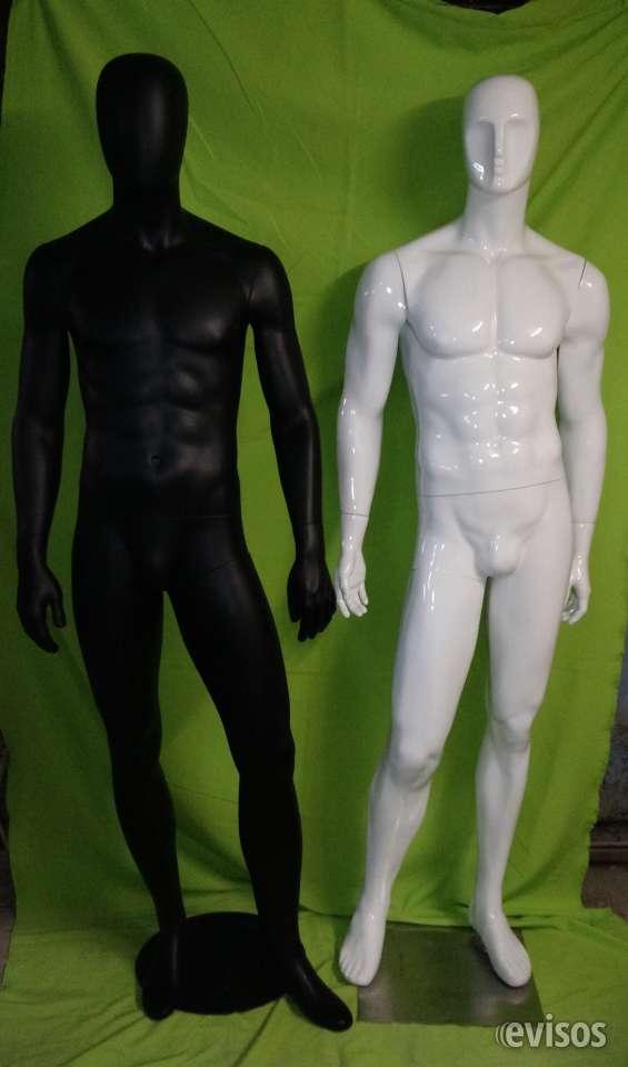 Cuerpos enteros  hombres para excibir vitrina