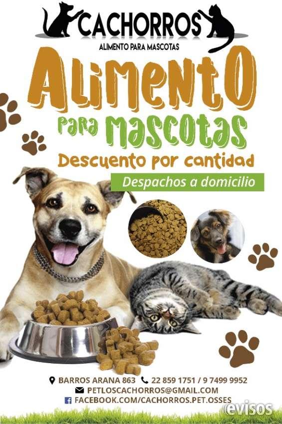 Alimento para mascotas, accesorios y farmacia veterinaria.