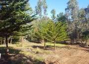 Ventas de terrenos Papudo, pichicuy, huaquen