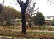 Se vende excelente terreno central en Limache