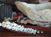decoracion  en piedra