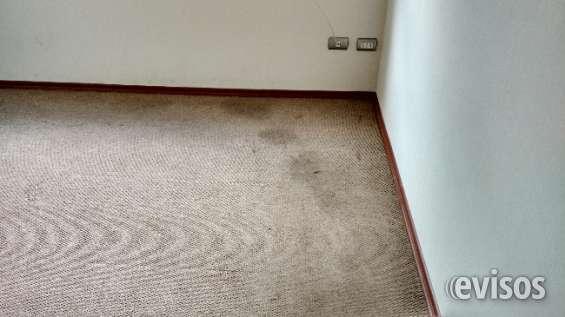 Limpieza profesional de alfombras en villa alemana 983295267