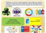Ingeniero Civil Industrial Conocimientos SIG OFRECESE