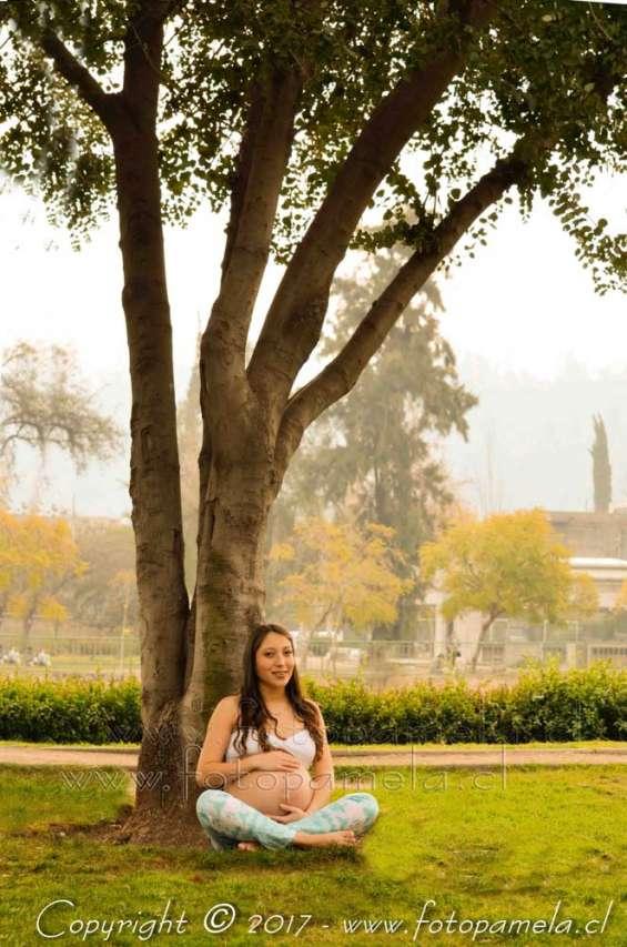 Arbol naturaleza fotos aire libre sesiones para embarazadas santiago chile