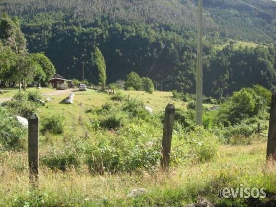 Terreno 100 hectáreas vendo