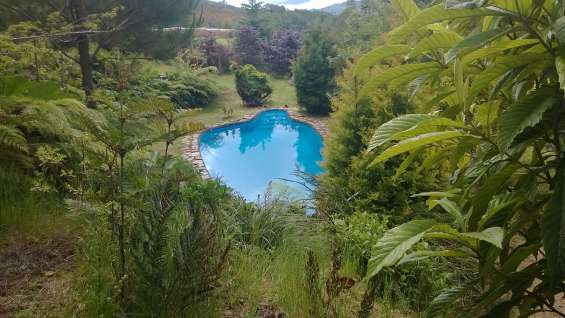 Parcela piscina bosque