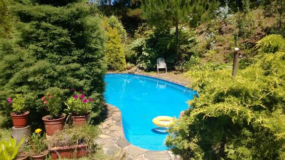 Parcela piscina cabaña rustica estero bosque