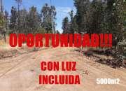 PARCELA 5000m2 CON LUZ ! VII REGION A 20 MINUTOS DE BALNEARIOS