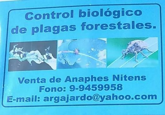 Venta de control biológico y servicios forestales