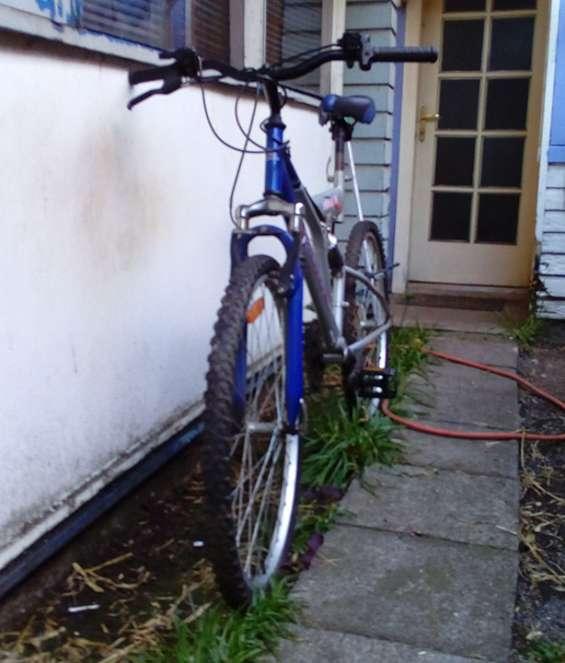 Vendo bicicleta avalanche nebula 26