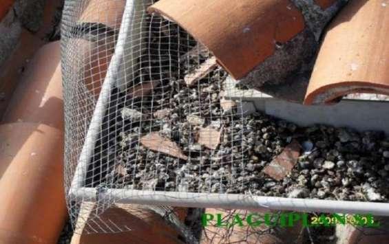 Reparación de techos y canaletas