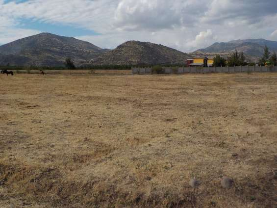 Putaendo dueño vende terrenos de 5000 m2 en $ 25 millones