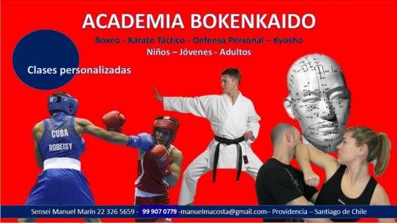 Curso de defensa personal con boxeo karate y aikido