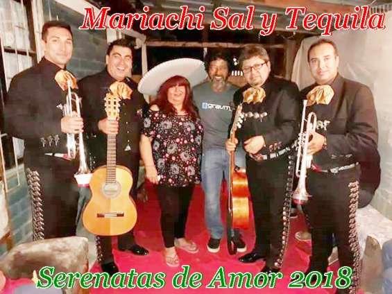 Mariachis de 15 años regala serenatas 976260519