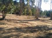 terrenos en laguna verde