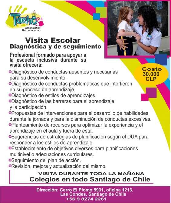 Visita de apoyo escolar: diagnóstica o de seguimiento
