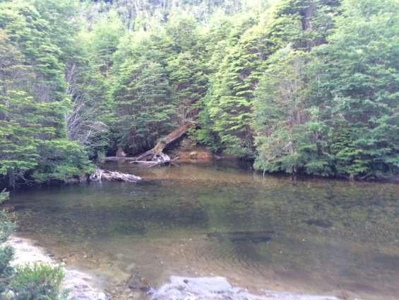 Maravilloso terreno 10 ha orilla río cóndor y bosque nativo