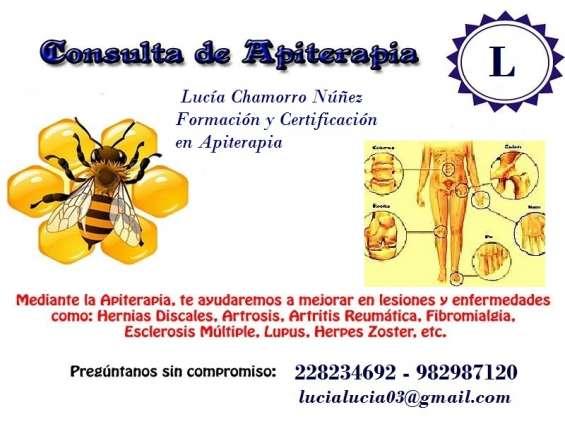 Apiterapia tratamiento con las abejas