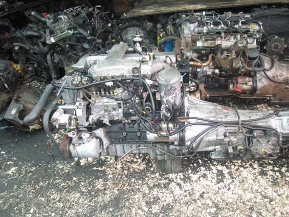 Motores ssanyoung iquique